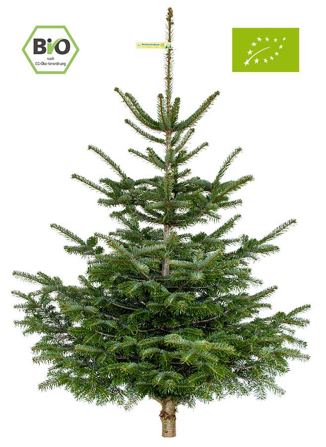 zur bestellung onlineshop weihnachtsbaum bestellen. Black Bedroom Furniture Sets. Home Design Ideas