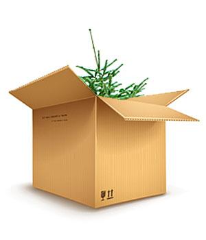 onlineshop weihnachtsbaum bestellen bio weihnachtsbaum. Black Bedroom Furniture Sets. Home Design Ideas